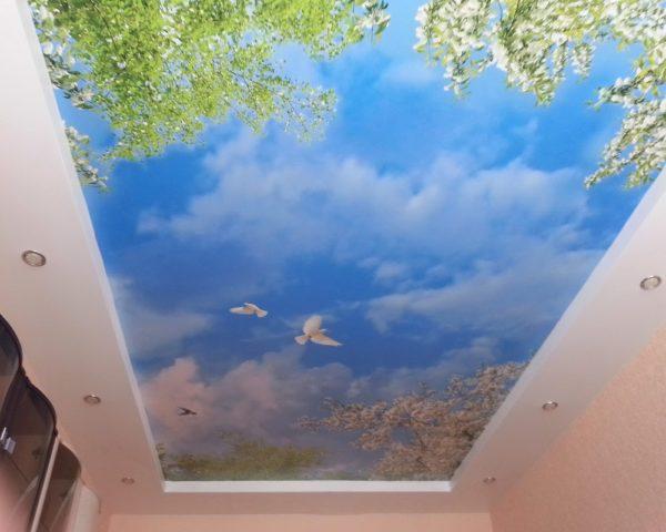 Натяжной потолок небеса фото