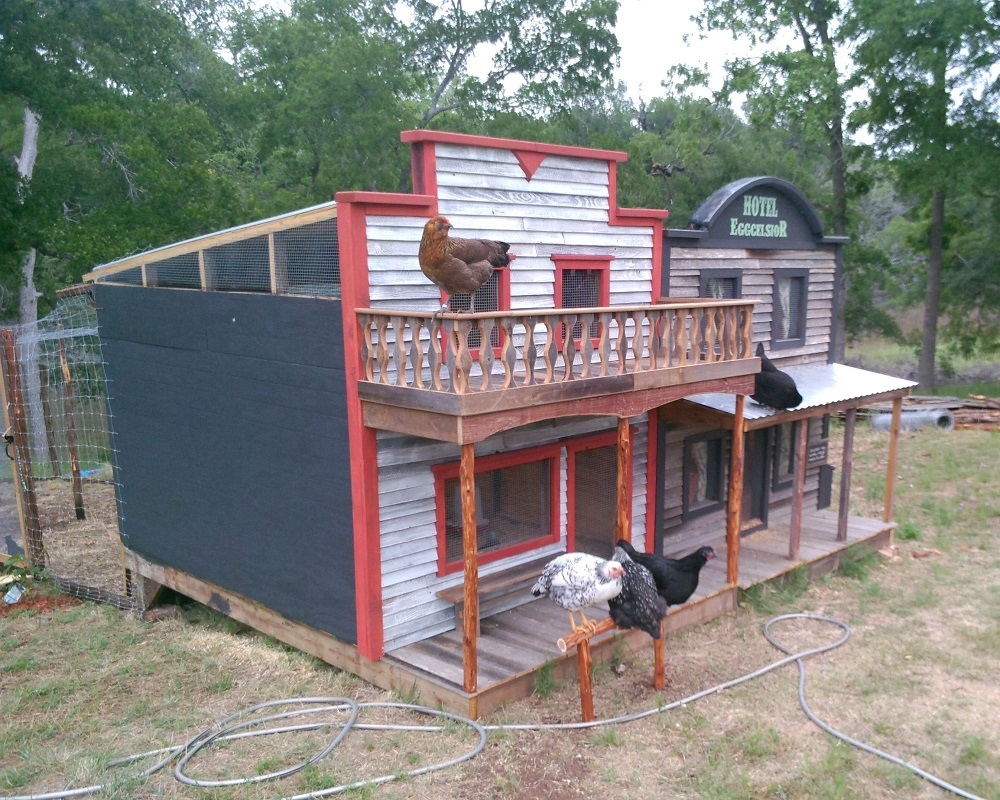 Old fashioned chicken house 50