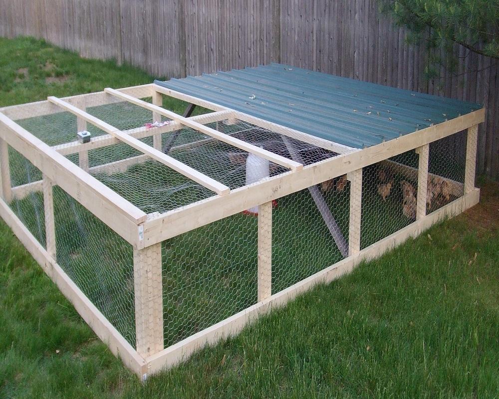 Загон для цыплят своими руками фото фото 685