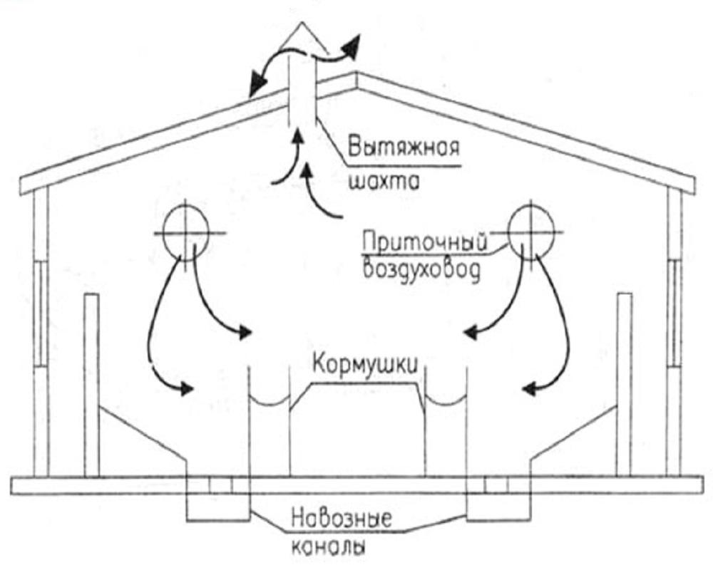 схема монтажа вентиляции коровника