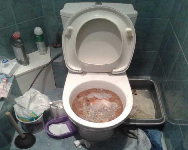 Чистка туалетов