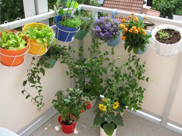 Идеи отделки балкона фото