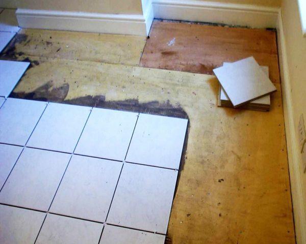 Плитка для ванны и туалета использоваться может одна и таже