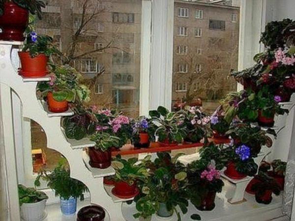 Балкон с полками фото